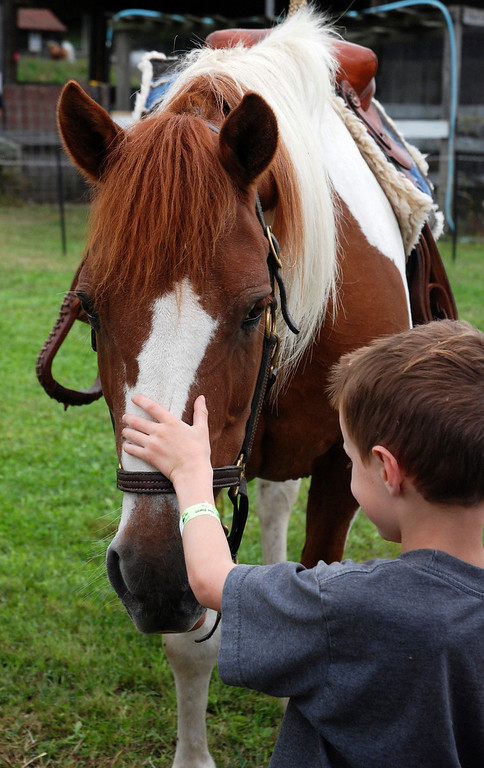 Description of . Kayla Rice/Reformer Weston Clark, 6, of Ashfield, Mass. greets a horse at Gaines Farm in Guilford.