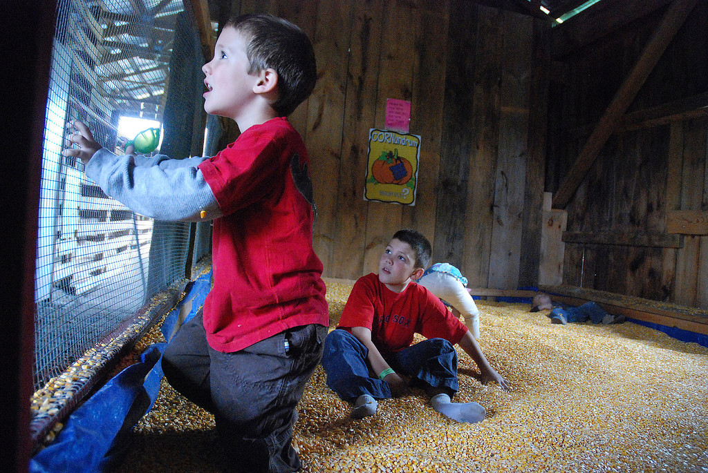 Description of . Kayla Rice/Reformer Children play in the corn box at the Gaines Farm in Guilford.